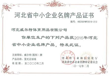 河北省中小企业名牌产品证书-笼式足球场